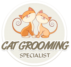 Cat Grooming Specialist - website dedicated to professional cat groomers and cat lovers